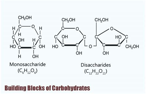 carbohydrates building blocks building blocks of carbohydrates types properties