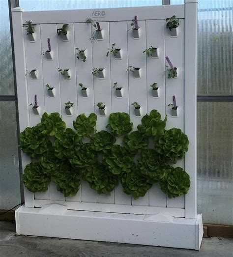 indoor hydroponic wall garden 1000 ideas about indoor hydroponics on pinterest