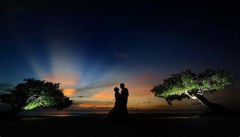 best wedding photographer in the world 6330159033 080cf76d9c z jpg