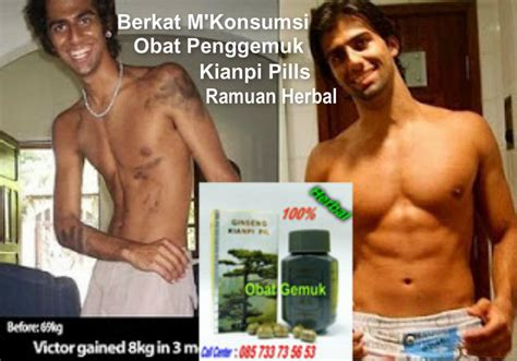 obat penggemuk bdan kianpi pills herbal healthy