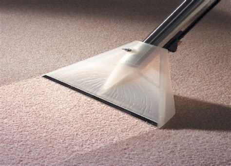 paradise carpet cleaners best carpet cleaning service