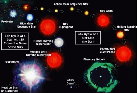 the life cycle of our sun star life cycle