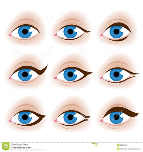 tutorial vector realistic realistic woman s eyes vector illustration stock vector