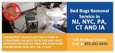 bed bug treatment nyc chemical free bed bug treatment manhattan nyc
