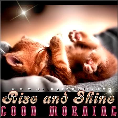rise  shine good morning  graphics quotes comments images   myspace