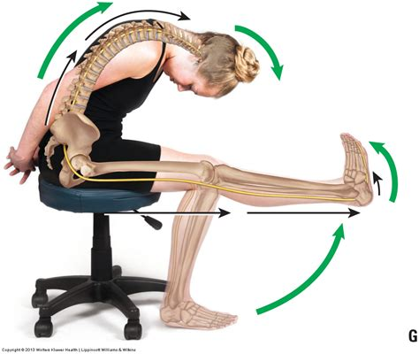 Slump Test slump test orthopedic assessment for space occupying condition tos
