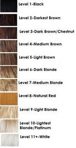 hair color levels hair levels chart hair i am colors and