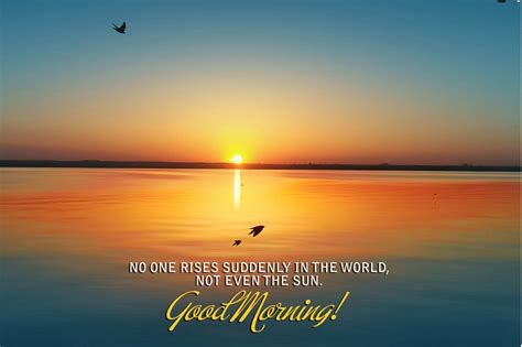 in the morning best morning images pics collection best whatsapp
