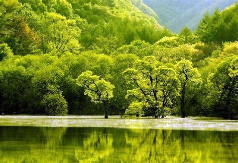imagenes de paisajes verdes para pantalla fondo escritorio paisaje lago verde