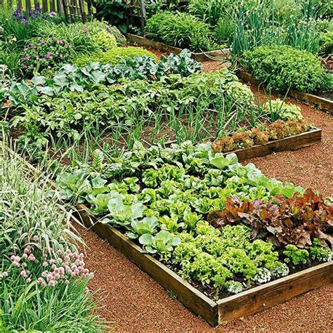 Planning Your First Vegetable Garden Country Chic Vegetable Garden In