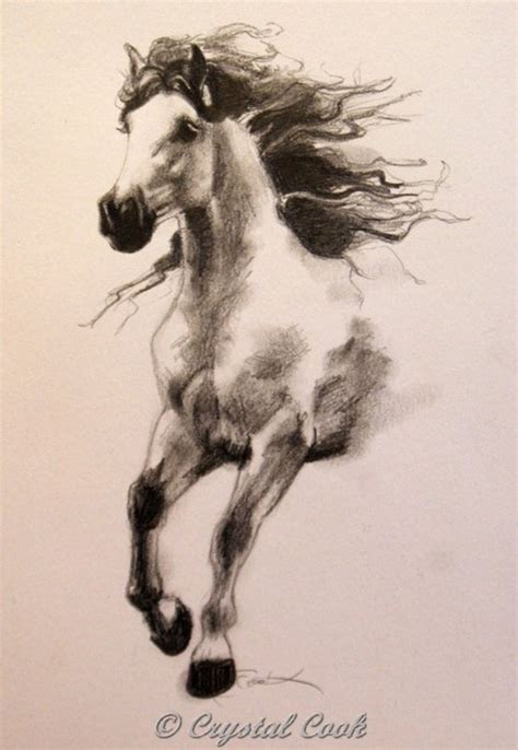 draw horse illustrator 201 best images about horse tattoo on pinterest