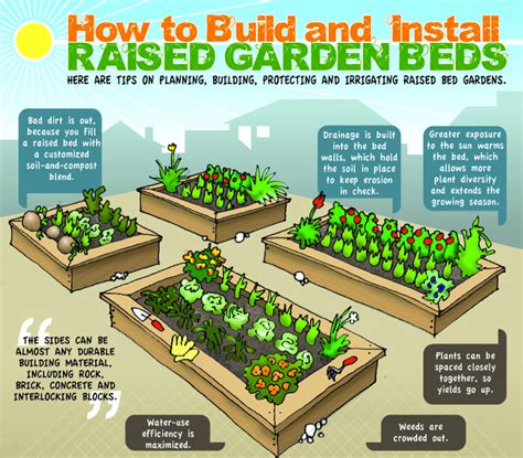 what to plant in raised garden beds 7 key benefits to raised garden beds realfarmacy com