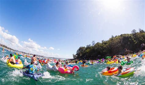 dragon boat racing manly 45 things to do in february