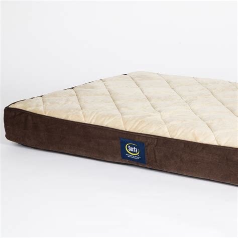 pillow top dog bed serta large quilted pillow top dog bed serta pet beds