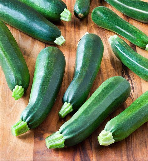 courgette dark green zucchini semis urbains