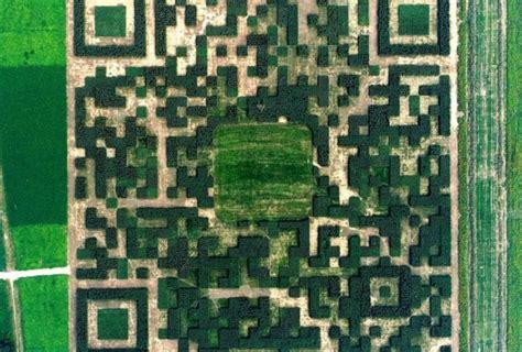 giant qr code  regular pruning    scannable