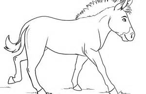 zebra coloring pages 187 coloring pages kids