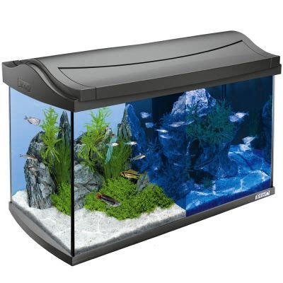 Lu Led Aquarium 60 Cm aquarium tetra aquaart led 60 l zooplus