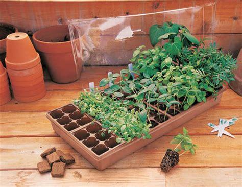 greenhouse  slot seed starter seed starting urban