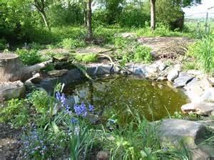 installer votre bassin de jardin terre et jardin terre