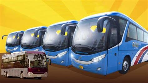 Www Daewoo Pk Daewoo Express Brings Volvo Busses In Its New Gold Class