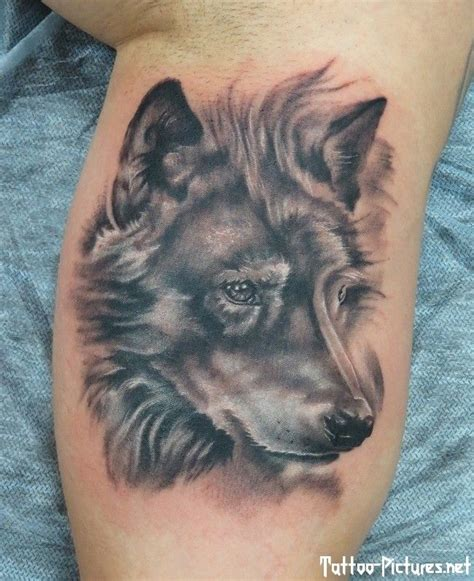 tattoo fixers wolf wolf leg tattoo on tattoochief com tattoo art