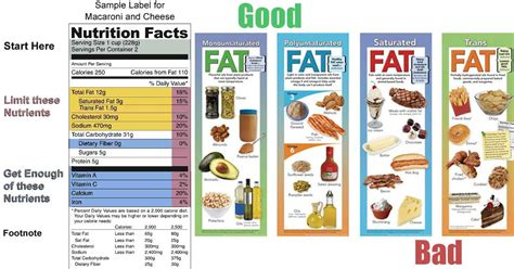 healthy fats uk archives comictoday