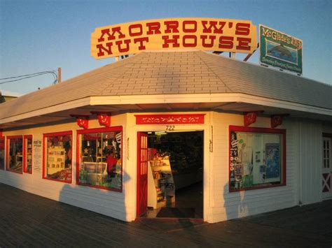 nut house stunning quot morrows nut house quot artwork for sale on fine art prints