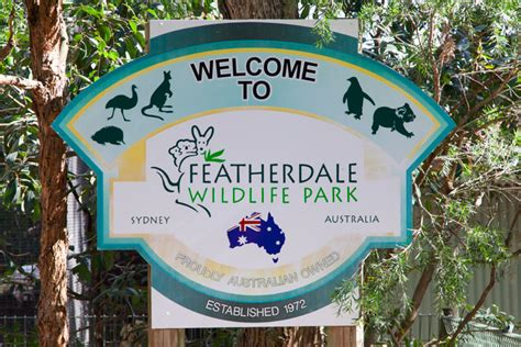 Florida Home Plans up close with aussie icons at featherdale wildlife park