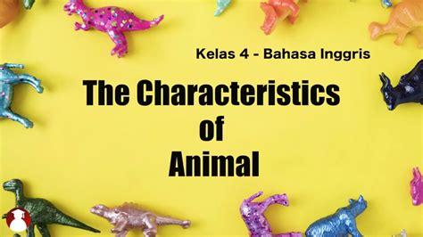 kelas  bahasa inggris  characteristics  animal