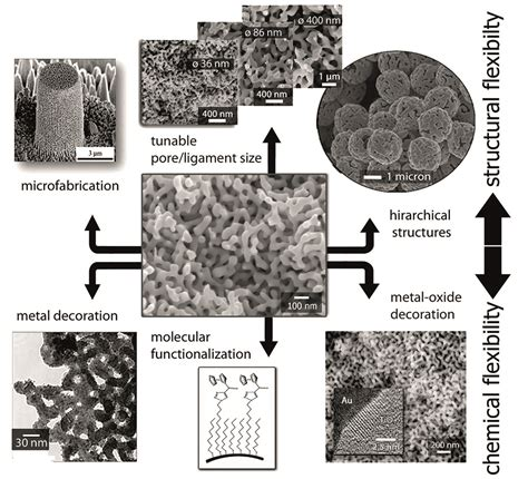 by structure guided design d ghosh et al j med chem 55 8464 2012 nanoporous gold laboratory journal business web for