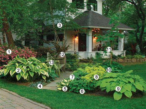backyard planting ideas best 25 azaleas landscaping ideas on pinterest flowers