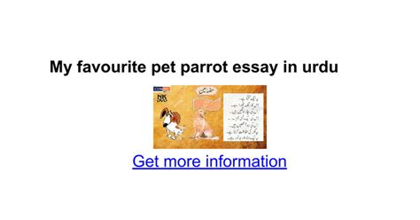 My Favorite Pet Essay by My Favourite Pet Parrot Essay In Urdu Docs