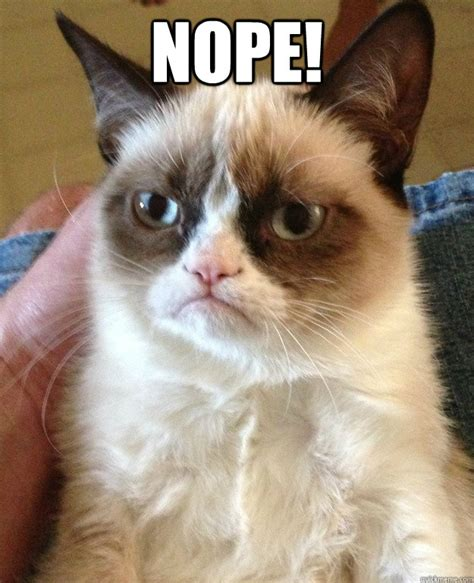 Grumpy Cat Meme Images - nope grumpy cat quickmeme