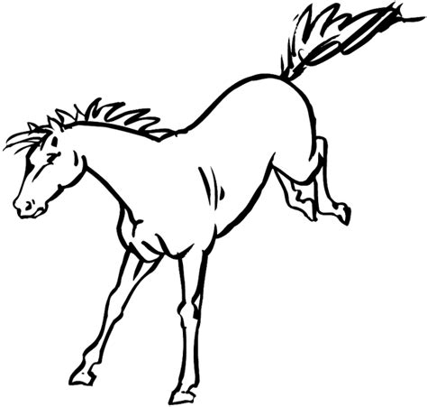coloring pages of bucking horses bucking horse coloring pages coloring pages