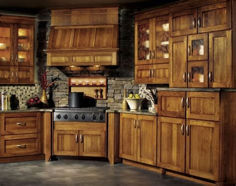 Rustic Kitchen Cabinet Pictures by Rustic Cabinets Design Ideas Home Design Garden