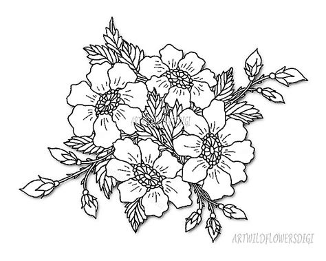 coloring pictures of wildflowers wild rose digital st coloring pages by artwildflowersdigi
