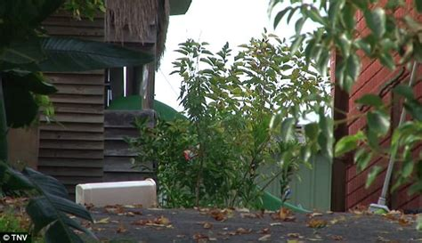body found in backyard sydney woman found dead in backyard pool daily mail online