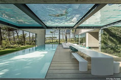 glass bottom pool 9 amazing glass bottom pools oddee
