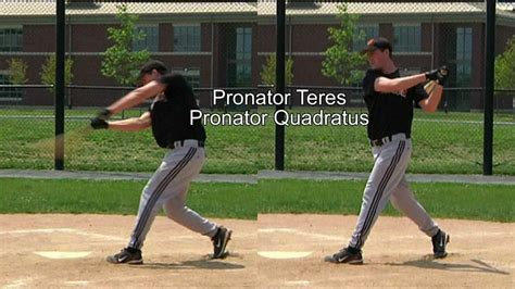 biomechanics of baseball swing 12 12 baseball swing follow through muscles used in
