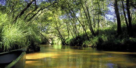 tourismefr vacances dans les landes de gascogne avec les