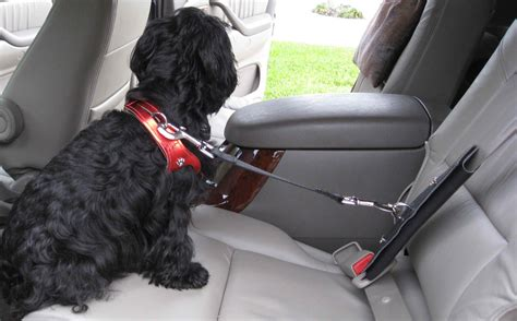 canine car seat belts freedom no pull harness car safety seat belt restraint