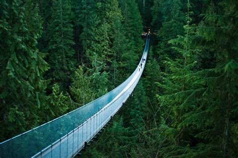 vancouver swinging bridge vancouver canada swinging bridges 行ったことがある pinterest