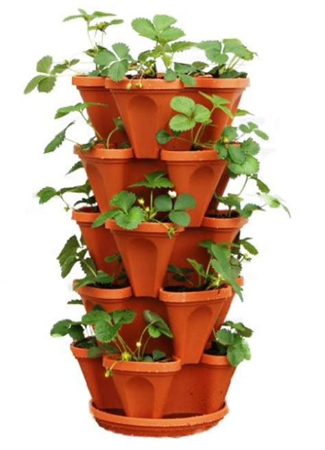 stacky  tier strawberry planter pot  pots
