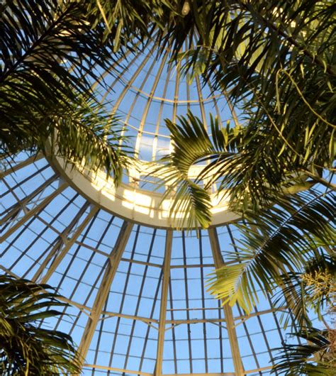 ny botanical garden membership membership to botanical gardens is part of prize package