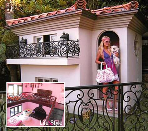 most amazing dog houses the world s 7 most expensive dog houses shocking dog houses dog and house
