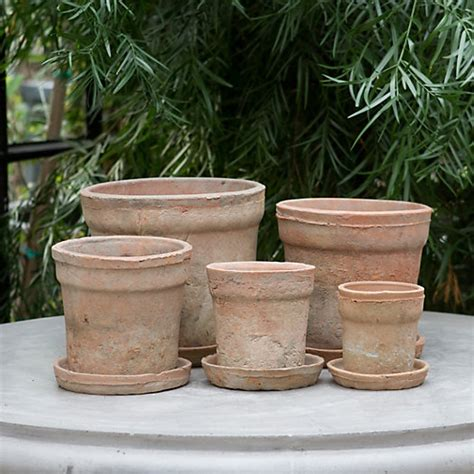 plant pots for sale retford terracotta lacquered plant earth fired clay wide rim pot terracotta old terrain