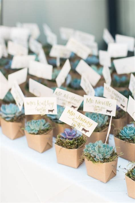favors for wedding guests ideas best 25 succulent favors ideas on