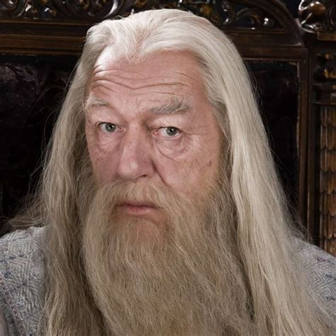 what house is dumbledore in saddest deaths in kids movies sad family films spoilers