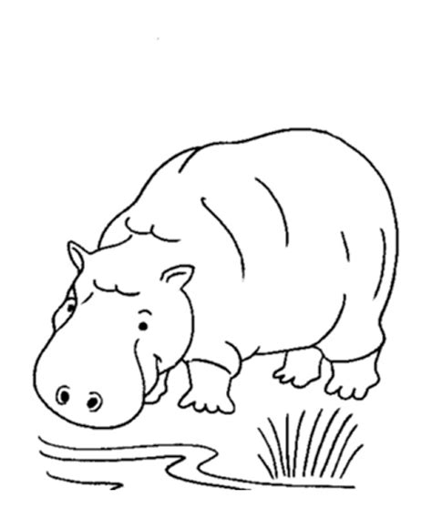 hippo coloring page printable free printable hippo coloring pages for kids